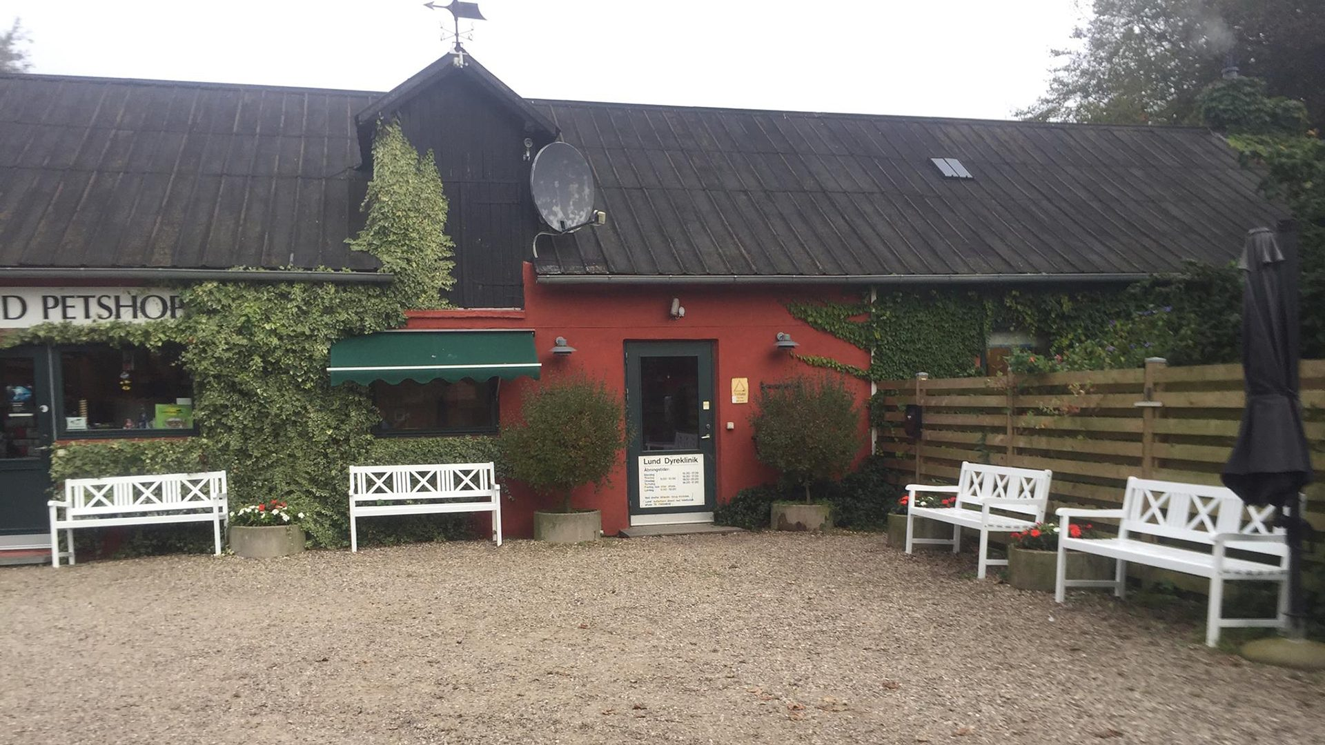 Lund Kattehjem Køb kat Horsens